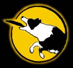http://www.endless-dog-fun.nl/nieuwe-logo2.jpg